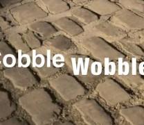 Frome Cobble Wobble 2011