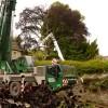 170 year-old churchyard tree felled