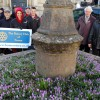 Crocuses bloom for Polio campaign