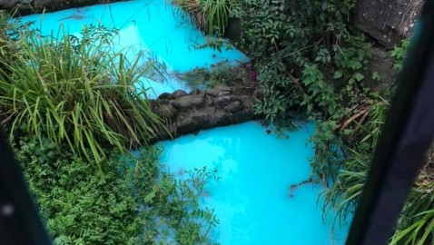 Pollution turns River Frome bright blue – Environment Agency investigations continue